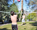Volleyball turns to ball play! 1